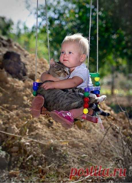 (+1) тема - Пост, доказывающий что у кошек золотые сердца | Занимательный журнал