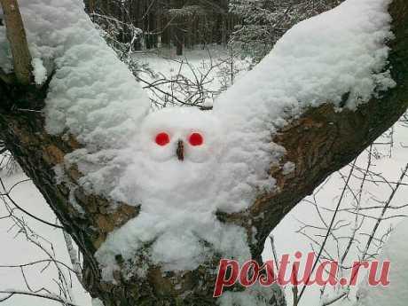 Подборка картинок))))#160 | Блог Михаил Дмитриев | КОНТ