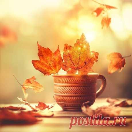 Осень называют сезоном грусти.Я не согласна : настоящая грусть приходит вместе с летом, когда не с кем разделить щедрость  солнца ...