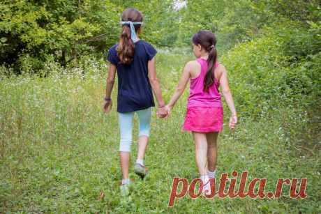 Что ребёнок должен знать о лесе вместо того, с какой стороны растёт мох | Краше Всех