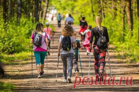 Скандинавская ходьба - отличный выбор для поддержания здоровья позвоночника  и суставов, а также для похудения.