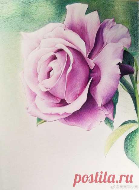 Рисуем розу — DIYIdeas