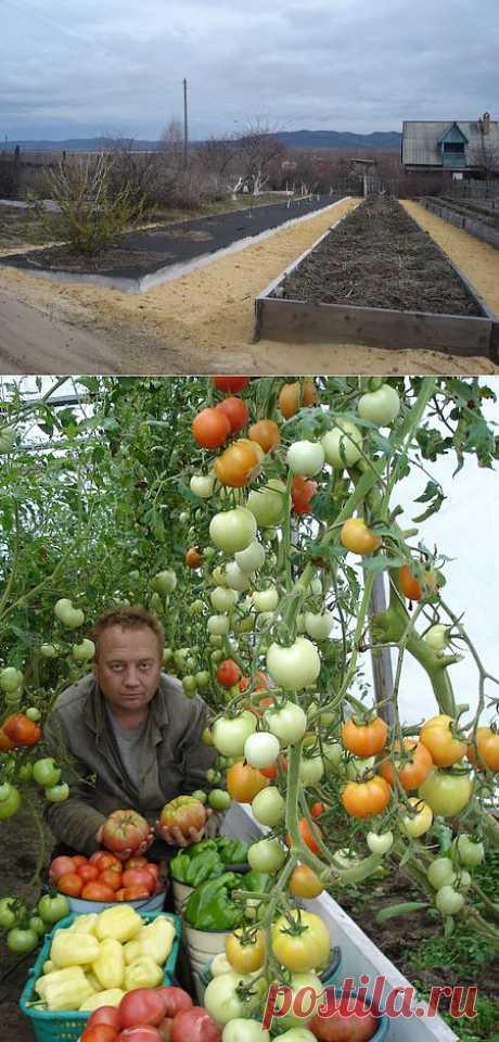 kimiburan - Удивительный огород Игоря Лядова