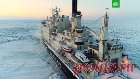 Документальный проект Елизаветы Листовой «Северный морской путь» | Выживи сам