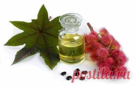 Касторовое масло для очищения кишечника | Народные знания от Кравченко Анатолия