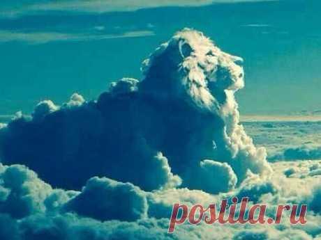 Как по облаку можно предсказать свою судьбу