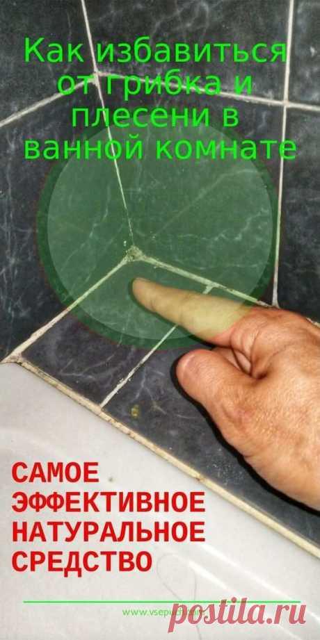 Как избавиться от грибка и плесени в ванной комнате. Самое эффективное натуральное средство!