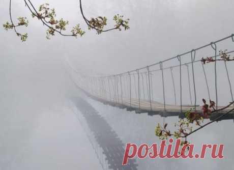 Мост в небытие.. Здесь всякий пройти должен. Путь в один конец.. #алекс