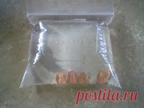Она бросила 4 монетки в полиэтиленовый пакет с водой… Не надеялся на такой результат!