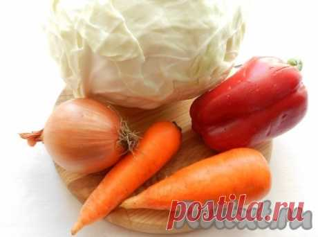 Salad from cabbage with pepper, carrots and onions (the recipe with a photo) | RUtxt.ru