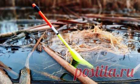Бесполезные способы ловли щуки на спиннинг или пустая трата времени