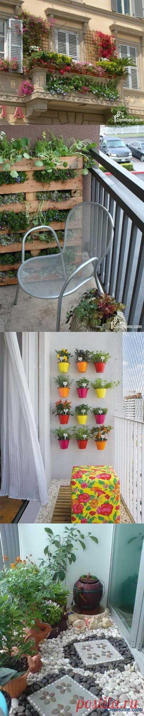 Сад и огород на вашем городском балконе. 170 ИДЕЙ для обустройства ЛЕТА!