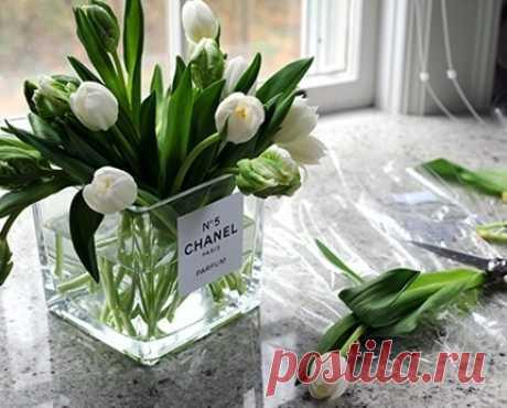 CHANEL № 5 / Цветы, вазы и цветочные горшки / ВТОРАЯ УЛИЦА