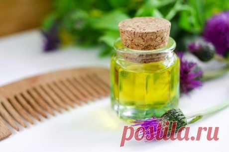 Como usar el aceite de bardana para los cabellos
