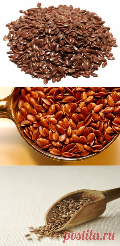 Семена льна — польза и вред. Как принимать семя льна — Бабушкины секреты