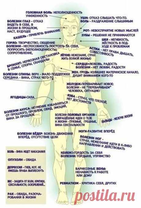 """КОВАРНЫЙ УРЕАПЛАЗМОЗ: ВОЗМОЖНО ЛИ ВЫЛЕЧИТЬ... - Познавательный сайт ,,1000 мелочей"""" - медиаплатформа МирТесен Мелкий внутриклеточный возбудитель инфекции, который очень часто становится причиной развития урогенитальных инфекций как у женщин, так и у мужчин – уреаплазма. Это не болезнетворный, а условно-патогенный микроорганизм, который у зараженных людей не вызывает никаких проблем со здоровьем. Серьезные"""