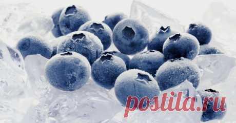 Как правильно заморозить чернику на зиму в холодильнике: 5 способов заморозки » Сусеки Черника – очень полезная и невероятно вкусная ягода. Она помогает укрепить иммунитет и оказывает благотворное влияние на зрение. Чтобы обеспечить себе возможность наслаждаться вкусом спелой черники и зимой, нужно немного потрудиться, и попробовать заморозить чернику в холодильнике. Ваши усилия обязательно оправдают себя холодными зимними вечерами.