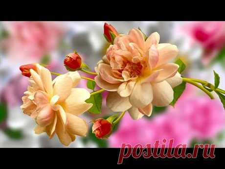 Красиво для души, Неземная музыка Сергея Чекалина уносит вдаль к мечтам! Релакс видео