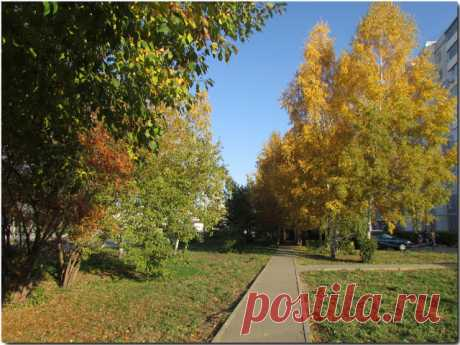 Осень на Балтийской улице в столице Алтайского края городе Барнауле