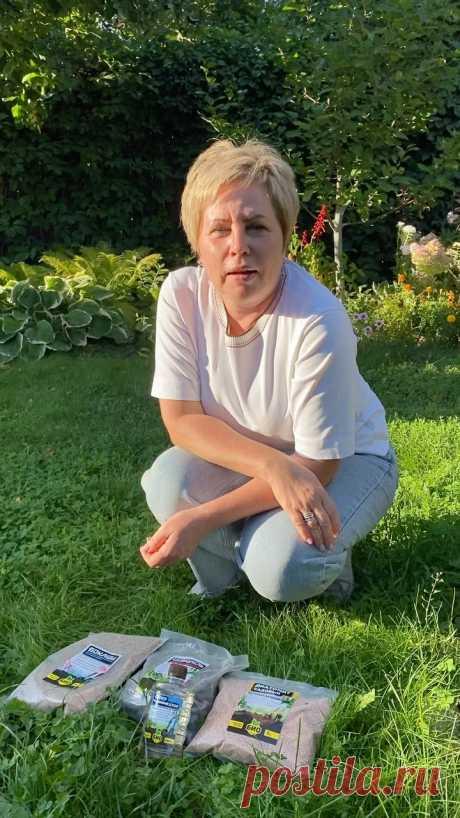 Лариса Зарубина в Instagram: «Друзья, в ролике рассказала, что можно внести в грядки осенью и как повысить плодородие почвы, а также, как защитить землю от почвенных…»