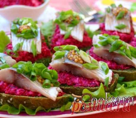 Herring sandwiches and beet and mustard namazky photo recipe of preparation