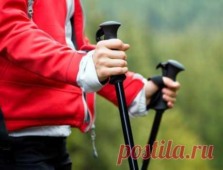 Скандинавская ходьба: Волшебные палочки, которые помогли мне перейти на ЗОЖ после 50 лет | ЗОЖ и Галка | Яндекс Дзен