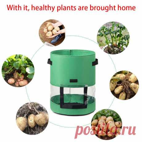 3 шт./компл. 7 10 галлонов садовый растительный мешок для выращивания грибов, картофеля, теплицы, овощей, саженцев, мешков для выращивания Тканевые горшки для рассады    АлиЭкспресс