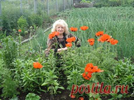 Ольга Червякова