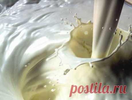 Чем же так особенно молоко? — Мегаздоров