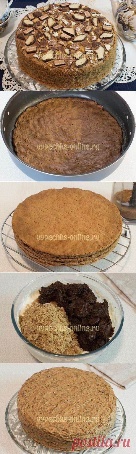 ✔️Шоколадный торт с черносливом, грецкими орехами, сметанным кремом - рецепт с фото пошагово