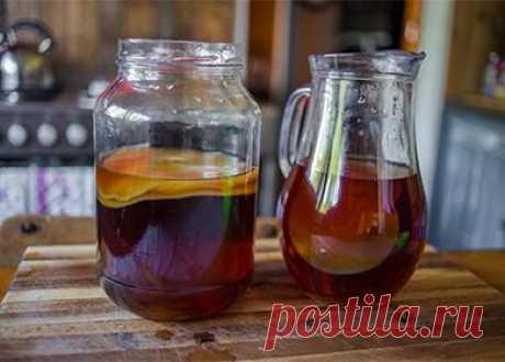 Как вырастить чайный гриб снуля вбанке вдомашних условиях: правильный уход, хранение, размножение и отзывы Как вырастить чайный гриб снуля: способы спомощью чая, яблочного уксуса, шиповника иживого пива. Правила ухода ихранения. Что делать, если медузомицет помутнел, негазируется или заплесневел. Как правильно самому вырастить чайный гриб с нуля: 4 способа Где взять гриб для питья и как его выращивать? Секрет рождения плавающего, медузоподобного создания довольно п...