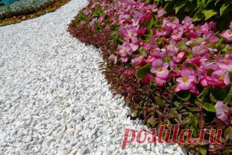 Мульчирование почвы: секреты и правила | Огородники