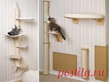 Удобная система, предназначенная для развлечения и отдыха кошек   Дом Надежды: кошки в добрые руки