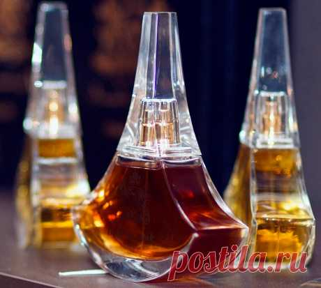 5 универсальных ароматов: духи на все случаи жизни