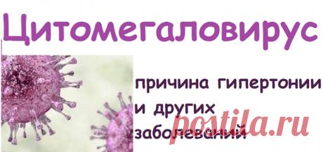 Цитомегаловирус-причина гипертонии и других заболеваний | Советы целительницы