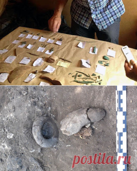 Археологи откопали в Суздале мастерскую по металлу 12-13 века
