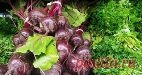 1 овощ, который может удалить жир из печени, очистить прямую кишку и восстановить зрение