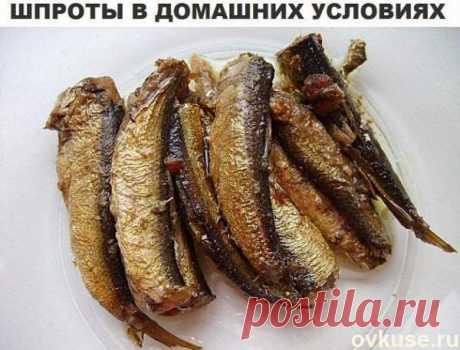 Шпроты в домашний условиях - Простые рецепты Овкусе.ру