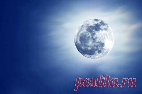 Лунный календарь садовода иогородника. 2-19 марта | Календарь | Дача | Аргументы и Факты