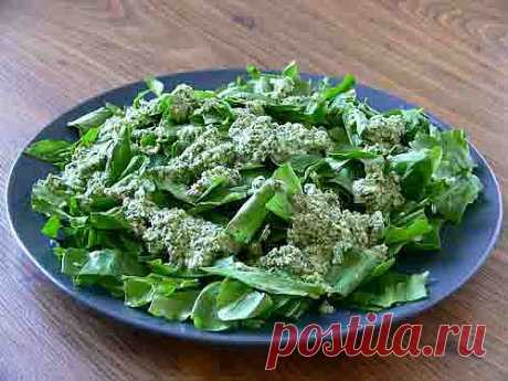 La espinaca más útil - crudo, posible es añadida por el aceite de oliva o el poco queso para el gusto