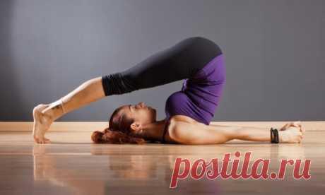 Йога для спины и позвоночника: домашний комплекс упражнений для начинающих, противопоказания — ХОЗЯЮШКА24