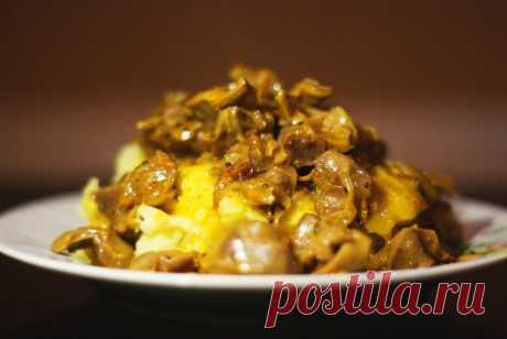 Куриные желудочки тушенные в сметане - рецепт с фото пошагово