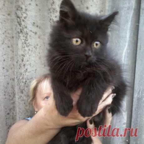 Валентина Габелкова