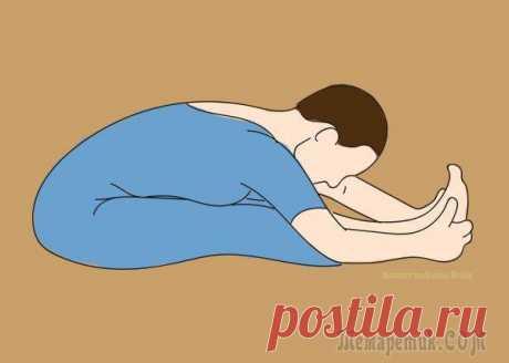 Йога для начинающих – 10 упражнений от боли в спине
