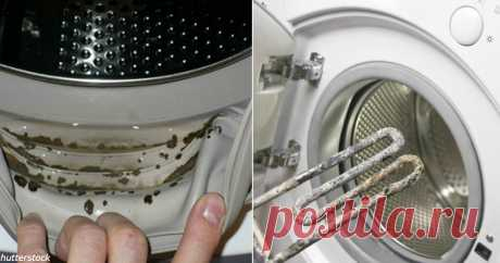 Как почистить стиральную машину-автомат - и продлить срок ее службы в 2-3 раза 6 обязательных шагов.