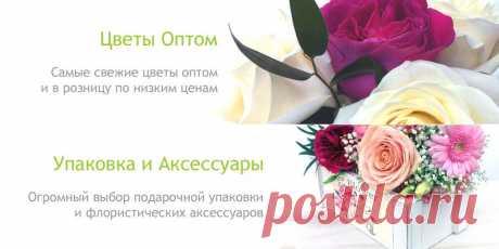 Аалсмеер. Цветы и Аксессуары. Цветы Оптом. Упаковка для цветов. Товары для флористов.