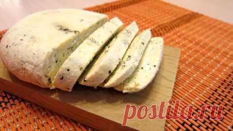 Сыр в домашних условиях из молока: 9 вкуснейших рецептов