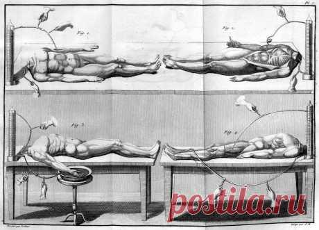 Одним из последователей Гальвани был его племянник Джованни Альдини (1762—1834, Милан), он также был одним из первых кто нашёл практическое применение открытиям своего дяди. Считается, что он даже стал прототипом доктора Виктора Франкенштейна
