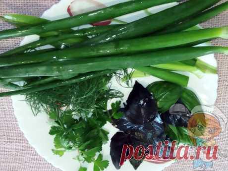 Как заготовить базилик на зиму, приготовить базиликовый чай: советы