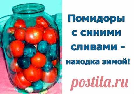 Помидоры с синими сливами - находка зимой.  Давно пробовал такие помидоры. Взял даже рецептик. Но все время как - то было не этого! А время сейчас именно то, когда помидоры и сливы ломятся на прилавках! В помидорах, консервированных с синими сливами, получается весьма приятный маринад, вкусные помидоры с нежным ароматом слив. Рассол настолько вкусный, малосоленый, что его можно пить вместо компота. Даже нарезанные кусочки моркови съедались с большим аппетитом. ИНГРЕДИЕНТЫ ...